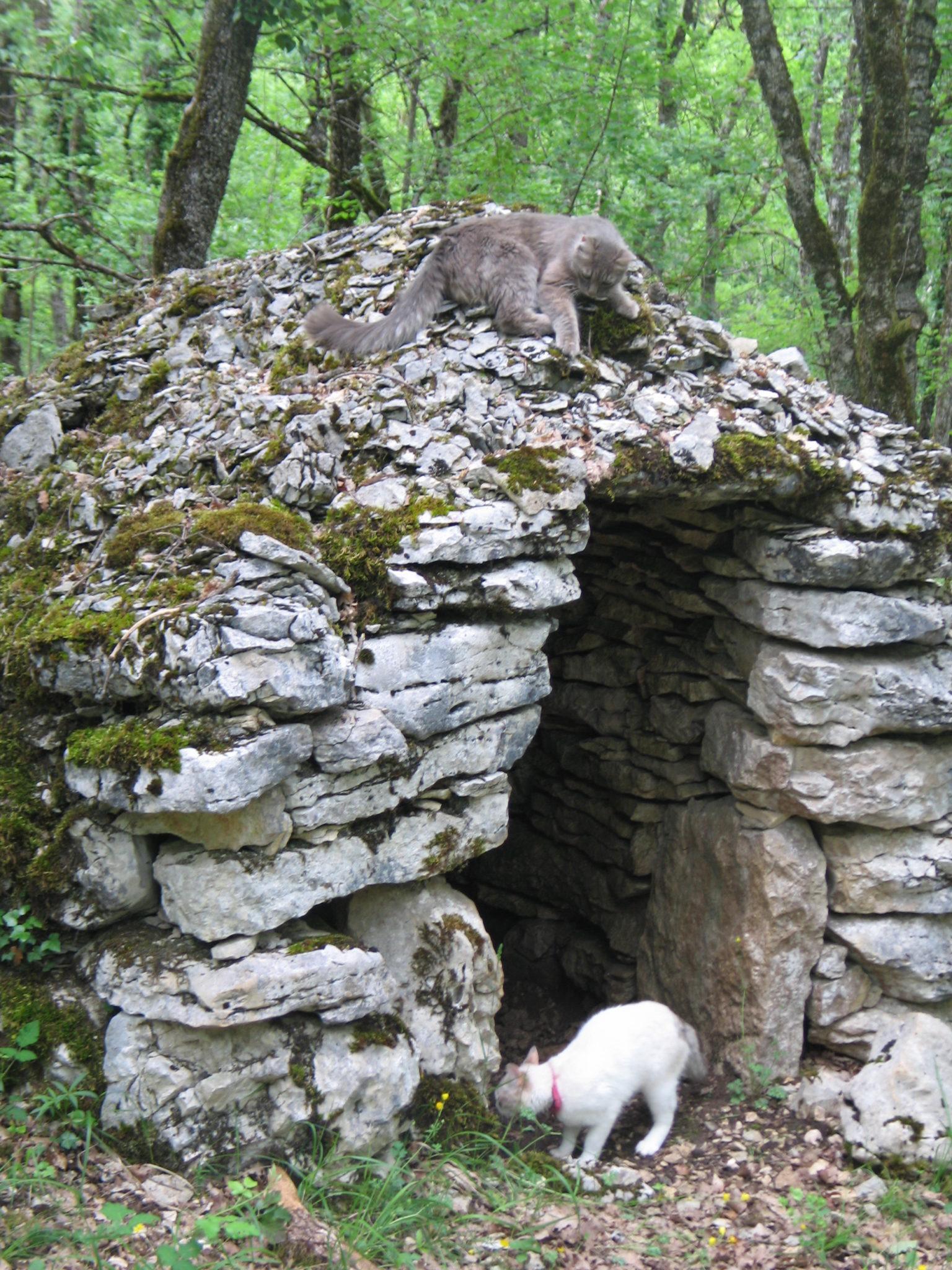 La Caselle aux chats